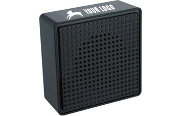 The Optimum Speaker